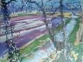 Hyacinthen-van-Lisse