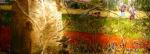rood-veld-met-koppers-150x50-olie-op-doek